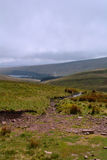Panoramic view from the welsh hills, Pen y Fan peak, Brecon Beacons , Wales, UK Stock Photos