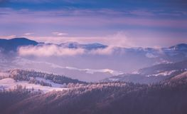 Panoramic view of winter mountains at sunrise. Landscape with foggy hills and trees covered with rime. Happy New Year! Filtered image:cross processed retro Stock Images