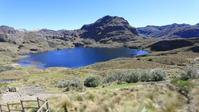 Panoramic view of wooden path park Cajas in a sunny day Ecuador. In a sunny day stock video
