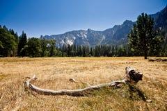 Panoramic view of Yosemite Valley, California Royalty Free Stock Photo