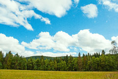 Panoramic views of the Black Forest with clouds and pine. Royalty Free Stock Images