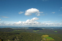 Panoramic views of the Black Forest with clouds and pine. Royalty Free Stock Photos
