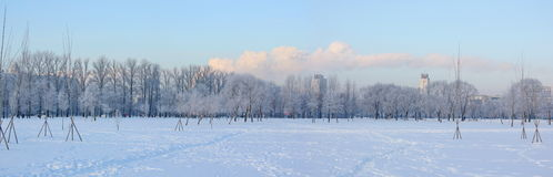Panoramic views of city park in winter Royalty Free Stock Photos