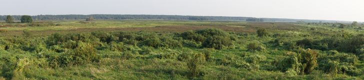 Panoramic vista on the wetlands of Biebrza National Park, Poland royalty free stock photo