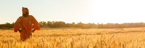 Panoramic web banner African woman in traditional clothes standing with her hands on her hips in field of barley or wheat crops at. Sunset or sunrise stock image