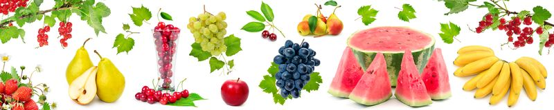 Panoramic wide picture healthy and useful berries and fruits Royalty Free Stock Photo