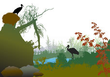 Panoramic wild landscape with a pond, broken tree, plants and storks. Green, brown and red landscape with silhouetters of trees, birds and plants Royalty Free Stock Images
