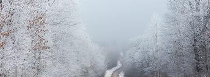 Panoramic Winding Road. A soft panoramic scene of a winding road and fog Stock Photos