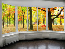 Panoramic windows with view to oaken autumnale grove. Big panoramic windows with view to oaken autumnale forest Stock Photo