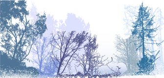 Panoramic winter forest landscape with silhouettes of snowy trees, plants and bushes Stock Photography