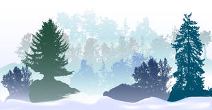 Panoramic winter landscape with snowy trees and snow drifts. Silhouettes of spruces, bushes and snowy forest Stock Image