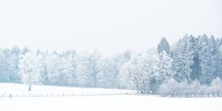 Panoramic winter view with snow of the Dutch Posbank in national Royalty Free Stock Images