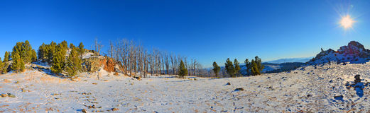 Panoramic winter view on a sunny morning in the Altai mountains, Siberia, Russia Royalty Free Stock Images