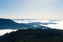 Panoramica circa la foresta nera Immagini Stock