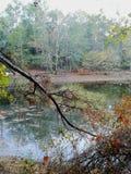 Panoramica del lago Fotografie Stock Libere da Diritti