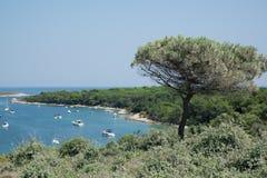 Panoramica della costa della penisola di Premantura Immagini Stock