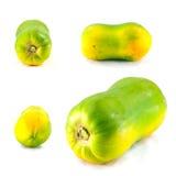 Panoramica della papaia Fotografia Stock