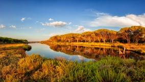 Panoramica di un allungamento dello stagno di Petrosu, Orosei sardinia immagine stock