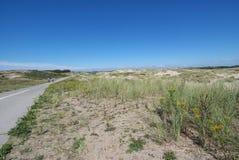 Panoramica di un paesaggio della duna Fotografie Stock Libere da Diritti