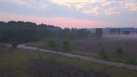 Panoramica porpora della brughiera archivi video