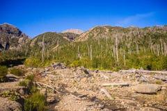 Panoramico dalla cima del vulcano nella Patagonia, Cile di Chaiten d immagini stock libere da diritti