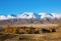 Panoramico della cresta di Altai-Chuya, Siberia ad ovest Fotografie Stock Libere da Diritti