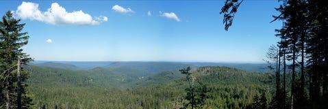Panoramico della foresta nera Immagine Stock Libera da Diritti