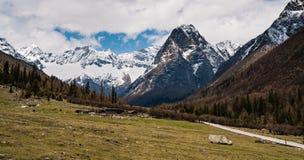 Panoramico di una montagna di quattro ragazze Fotografia Stock