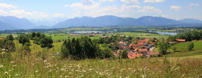 Panoramicznego widoku bavarian pogórza z wildflower łąką i losem angeles, Obrazy Stock
