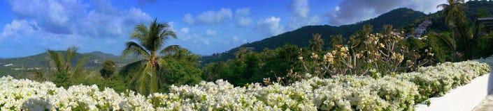 Panoramiczni widoki góry Zdjęcie Royalty Free