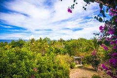 Panoramiczni widoki piękny niebo i ocean od Zdjęcie Royalty Free