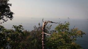Panoramiczny Adriatic morze blisko Piran z łodziami na morzu zbiory