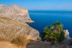 Panoramiczny denny widok zdjęcie stock