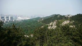 Panoramiczny góry & wzgórze, wiatrowa potrząsalna sosna zbiory