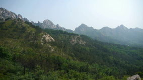 Panoramiczny góry & wzgórze, wiatrowa potrząsalna sosna zdjęcie wideo