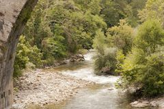 Panoramiczny krajobraz riverbed w naturze otaczającej roślinnością obraz stock