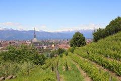 Panoramiczny krajobraz w Turyn obrazy royalty free