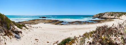 Panoramiczny krajobrazowy wizerunek ocean zatoka w Południowa Afryka Zdjęcie Royalty Free