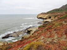 Panoramiczny obrazek przy Cabrillo Krajowego zabytku tidepools i blefami Nabrzeżni blefy i tidepools znajdują wzdłuż point loma obraz royalty free