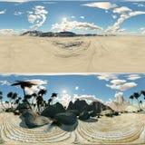 Panoramiczny palmy w pustyni robić z jeden 360 stopni lense Obrazy Stock