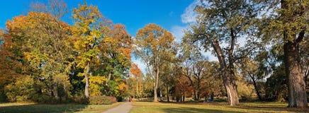 panoramiczny parkowy malowniczy widok Fotografia Stock
