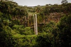 Panoramiczny siklawa wśród obfitolistnej roślinności we wnętrzu naturalnego parka zdjęcie royalty free
