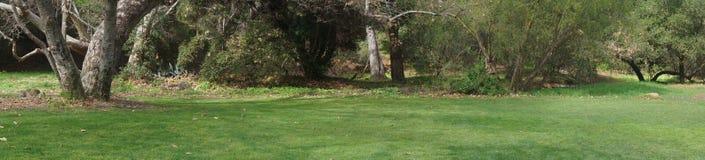 Panoramiczny widok łąka Zdjęcia Royalty Free