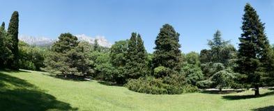 Panoramiczny widok Ai Petri góra Obrazy Stock