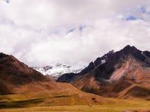 Panoramiczny widok Andes halni przy Abra losu angeles Raya przepustką, Puno, Peru zdjęcie stock