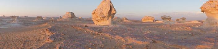 Panoramiczny widok biała pustynia Fotografia Royalty Free