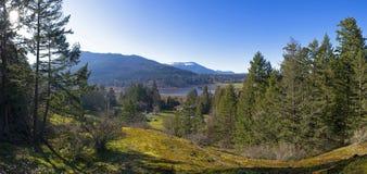 Panoramiczny widok Bright Angel park w Vancouver wyspie, BC obrazy stock