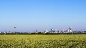 Panoramiczny widok Frankfurt magistrala - Am - Obrazy Royalty Free