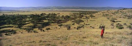 Panoramiczny widok gdy Masai wojownik w czerwonym przegląda krajobrazie Lewa Conservancy, Kenja, Afryka z górą Kenja Fotografia Royalty Free