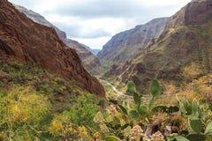 Panoramiczny widok Guayadeque wąwóz gran canaria Hiszpania Obraz Royalty Free